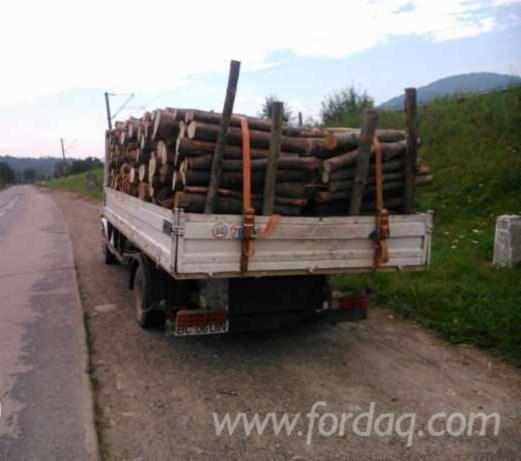 Road-Freight-Romania