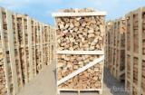 Firewood - Chips - Pellets  - Fordaq Online market - Beech (Europe) Firewood/Woodlogs Cleaved 8-30 cm