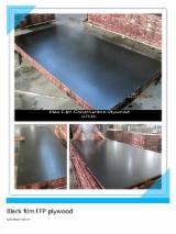 China Supplies Black film Face Plywood (F17 grade )