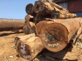 Tropical Wood  Logs - Veneer Logs, Ovengkol (Amazakoue, Palissandro, Mozambique), CE