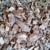 High quality Acacia wood chips from Vietnam