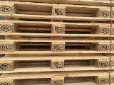Paletten, Kisten, Verpackungsholz - Neu ISPM 15 Europalette Polen zu Verkaufen