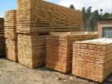 Find best timber supplies on Fordaq Beech Wood Timber