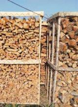 Find best timber supplies on Fordaq Wholesale All broad leaved specie Firewood/Woodlogs Cleaved in Romania