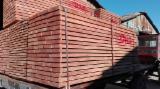 Beech  Planks (boards)  A Romania