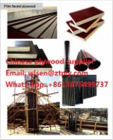 Plywood For Sale - film faced plywood (concrete formwork) Brown, Black film, hardwood, poplar core.