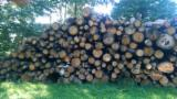 Firelogs - Pellets - Chips - Dust – Edgings Other Species For Sale Germany - Wholesale Oak (European) Firewood/Woodlogs Not Cleaved in Germany
