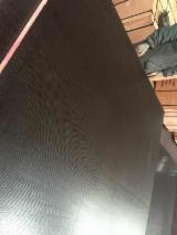 Plywood For Sale - Black film faced plywood for construction/ Shuttering