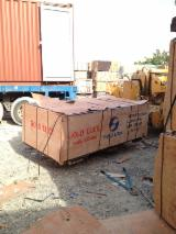 Plywood Poplar For Sale - 18mm construction film faced plywood