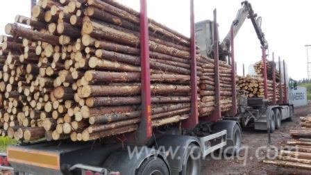 Raw-logs-billets-for