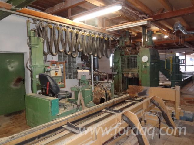 Used-WD-1994-Solid-Wood-And-Panel-Sawing-Machines---Other-For-Sale