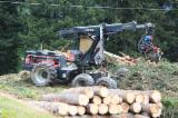 Forest & Harvesting Equipment Switzerland - Harvester Valmet 911