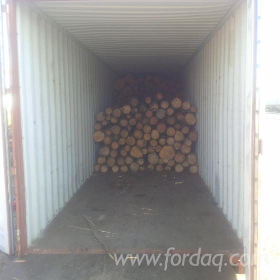 Wood-shipment-services-from