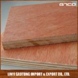 Plywood Bintangor Calophyllum ISO-9000 For Sale - Bintangor Faced Poplar Core plywood