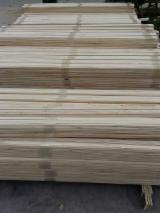 Sawn Timber - All specie, 120 m3 per month