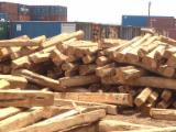Tropical Wood  Logs -  cylindrical trimmed round wood, Teak, Ivory Coast