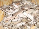 Energie- Und Feuerholz Waldhackschnitzel - Waldhackschnitzel
