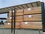 Hardwood - Square-Edged Sawn Timber - Lumber  - Fordaq Online market Red Alder KD Edged