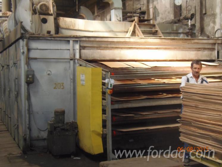 Rental-%28Finish-veneer-production