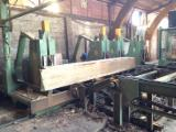Woodworking Machinery Log Band Saw Vertical - Log bandsaw line