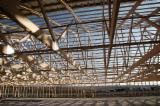 Holzhäuser - Vorgeschnittene Fachwerkbalken - Dachstuhl Zu Verkaufen - Vorgeschnittene Fachwerkbalken - Dachstuhl, Tanne
