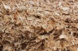 Firelogs - Pellets - Chips - Dust – Edgings All Specie - Acacia wood chips Vietnam