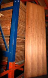 Doors, Windows, Stairs - STOCK OFF WOOD DOORS PANELS