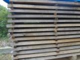 Tropical Timber For Sale - Find Your Business Partner On Fordaq - Eucalyptus boules from Brazil