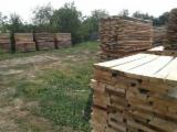 Romania Unedged Timber - Boules - Lime Tree Boules from Romania, Bacau