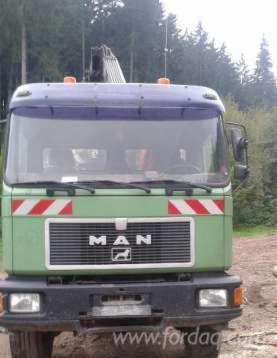 MAN-Transport-Lemn--20-500-%E2%82%AC