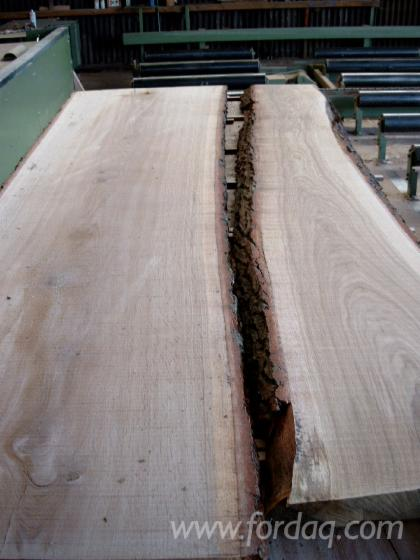 Loose--Oak-%28European%29