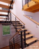 Doors, Windows, Stairs - Hardwood (Temperate), Beech (Europe), Stairs