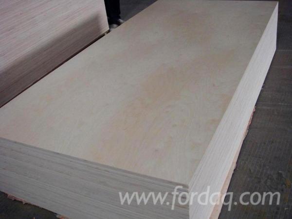 Chinese-White-Birch