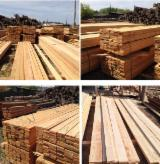 Softwood  Unedged Timber - Flitches - Boules - Siberian Larch 0-1 in 5.1 to 6.0 meters in length