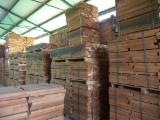 Hardwood  Sawn Timber - Lumber - Planed Timber - Romanian Beech Timber
