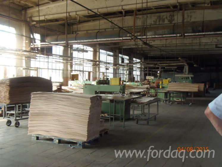 Rotary-cut-veneer-producer-in