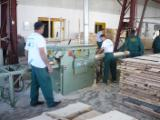 Woodworking - Treatment Services - Cut To Size Sawing Softwoods in Romania