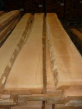 Hardwood  Unedged Timber - Flitches - Boules For Sale Germany - Beech, steamed, unedged, KD
