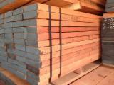 null - Malaysia Sawn Timber Offer: Keruing, Kapur, Selangan Batu, Red Meranti