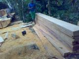 Tropical Wood  Sawn Timber - Lumber - Planed Timber Iroko Mvuli, Kambala, Semli, Rokko - Iroko