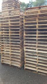 Wholesale Wood New - US Standard Pallet, Recycled - Used in good state