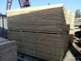 Softwood  Sawn Timber - Lumber Spruce Pine For Sale - Squares, Spruce/Pine