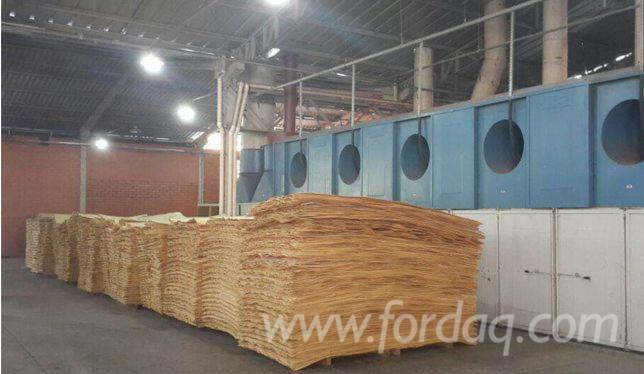 Cheap-price-of-rotary-cut-Pine-veneer-for