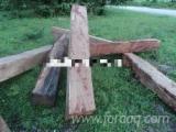 Wälder Und Rundholz Asien - Schnittholzstämme, Kossoholz