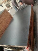 Plywood - Plywood For Construction /Concrete Fromwork Plywood