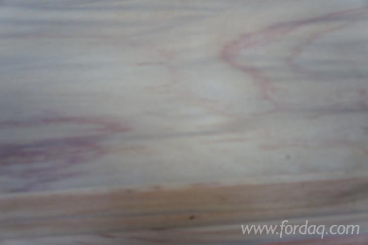 Vand-Furnir-Natural-Stejar-Patru-Fete-Netede