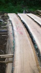 Hardwood  Unedged Timber - Flitches - Boules - Edged and unedged oak timber products
