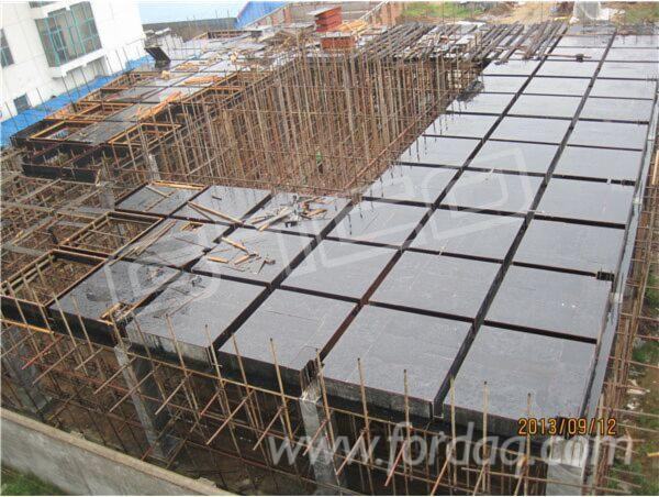 Linyi-Film-Faced-Plywood-Marine-Plywood-Construction