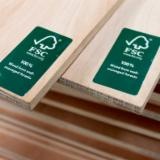 FSC 100% Eucalyptus Plywood, 3.6-25 mm