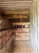 Tropical Wood  Logs For Sale - Kosso wood logs for sale
